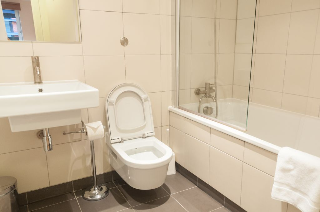 image 7 furnished 1 bedroom Apartment for rent in Queenhithe, City of London