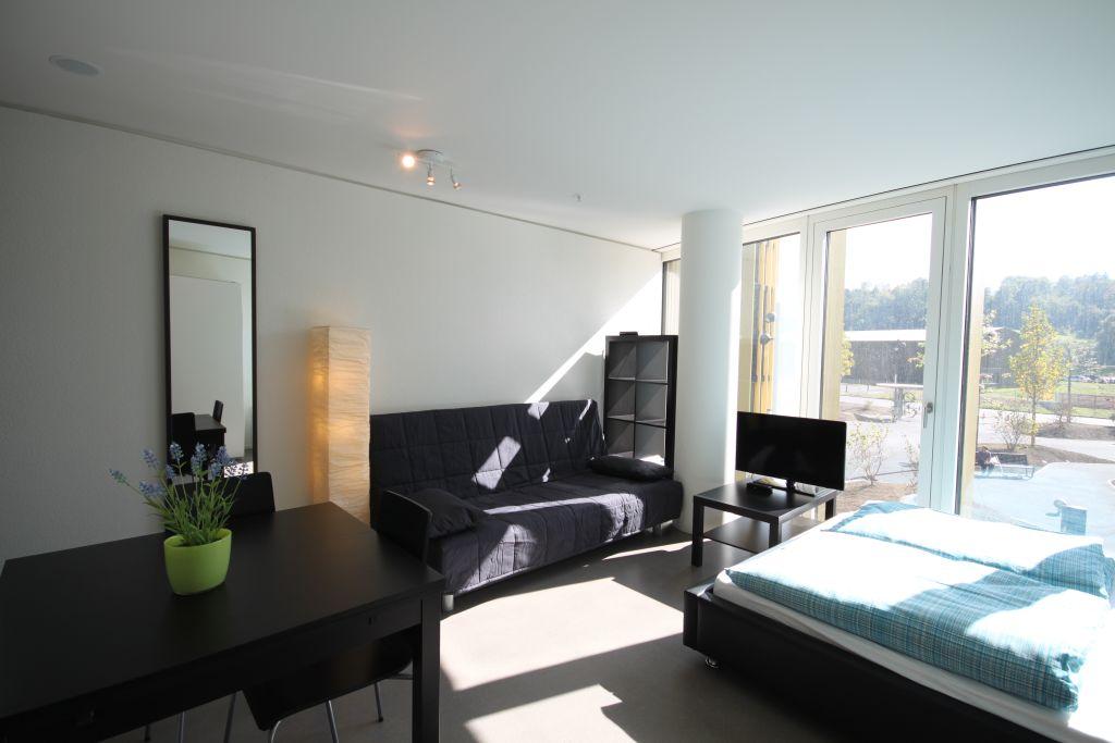 image 1 furnished 1 bedroom Apartment for rent in Lucerne, Luzern