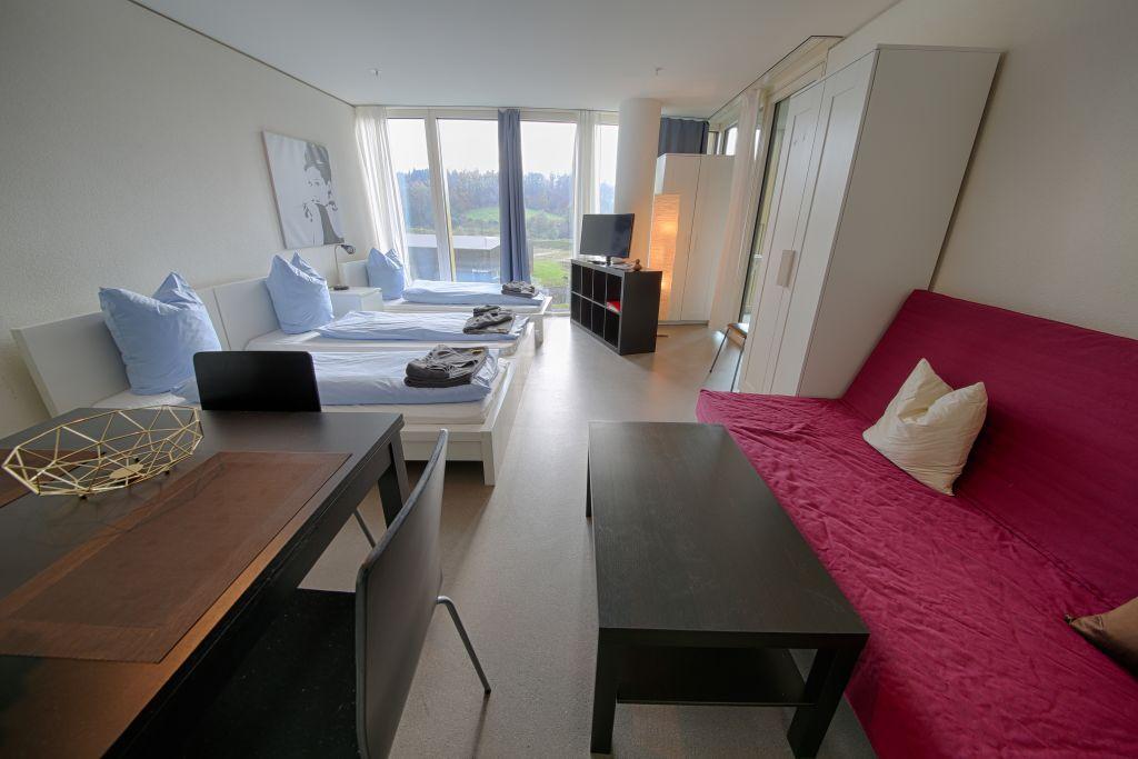 image 2 furnished 1 bedroom Apartment for rent in Lucerne, Luzern