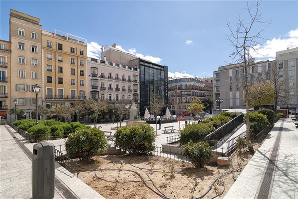 Calle Francisco Navacerrada