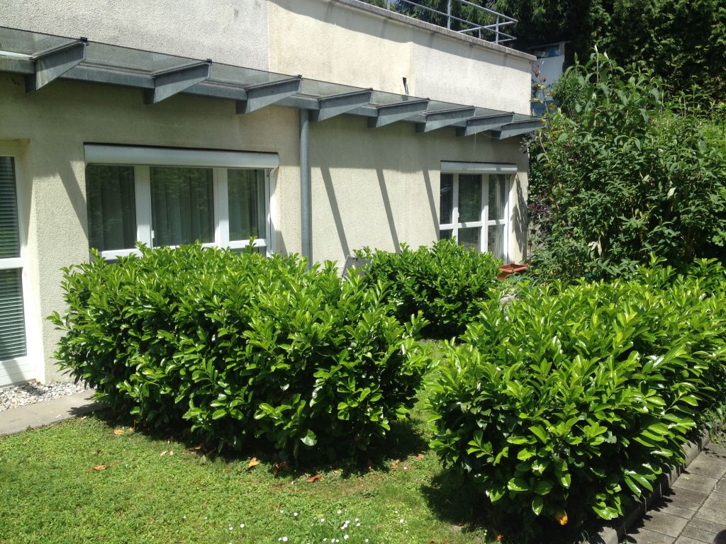 image 2 furnished 1 bedroom Apartment for rent in Innsbruck, Tyrol