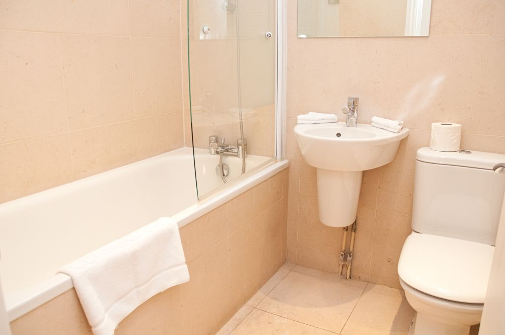 image 10 furnished 1 bedroom Apartment for rent in Tower, City of London