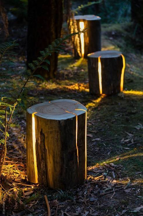 Cracked Log Lamps: Eclectic Garden  by Duncan Meerding