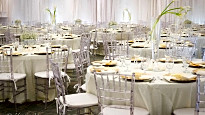 Recommended event creative picture for Aisha Jimenez - Tampa, FL