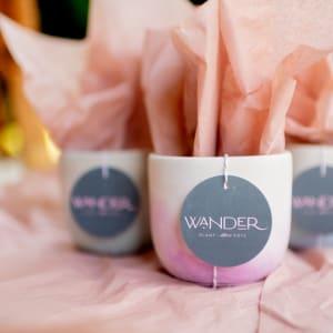 Click to shop Wander Plant Pots