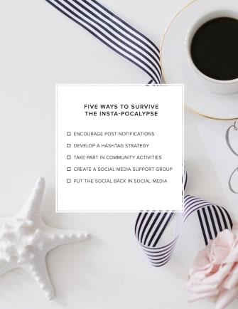 Instagram-Algorithm-Strategies-Entrepreneurs image