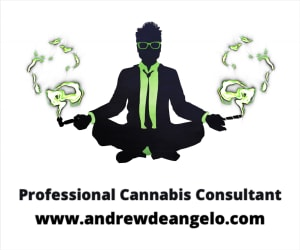 Andrew DeAngelo Consulting