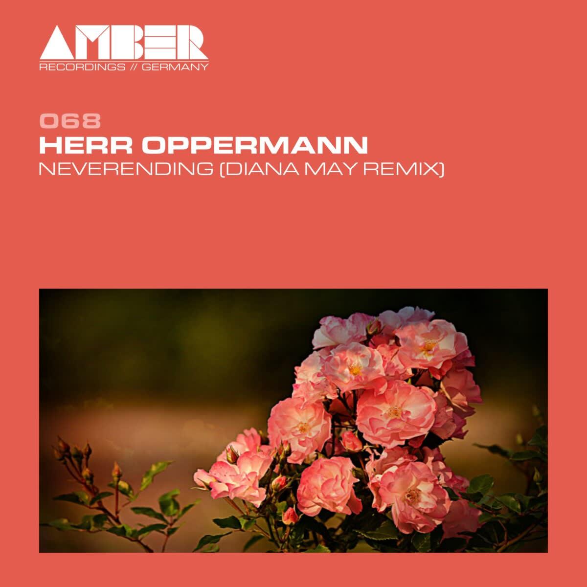 AR068   Herr Oppermann - Never Ending (Diana May Remix)
