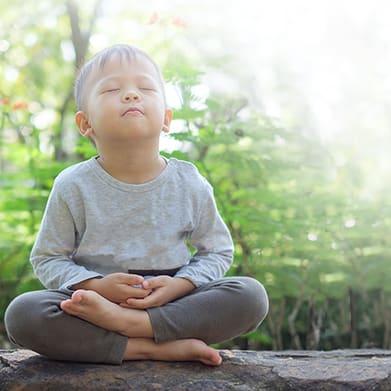 emotional intelligence childhood development