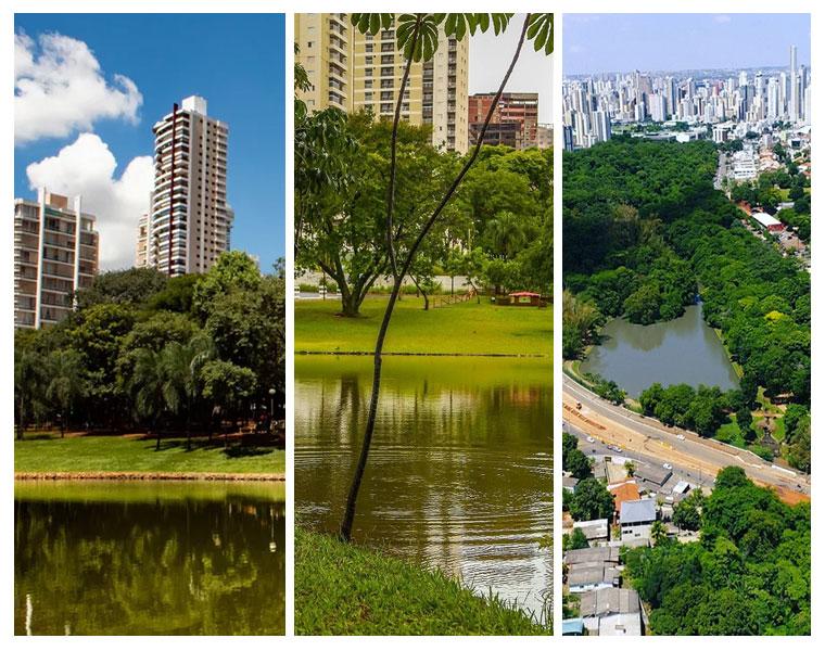 Goiânia precisa democratizar o verde