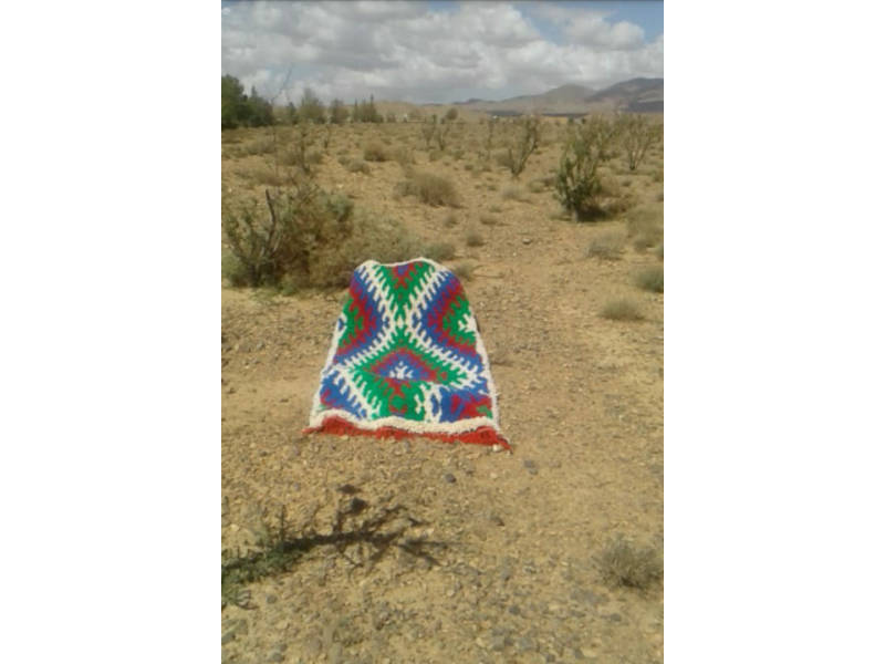 Colored Wool and Cotton Warp Pile Knot Rug