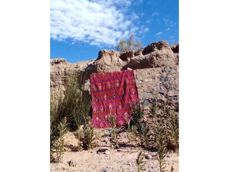 Colored Wool Flatweave Rug