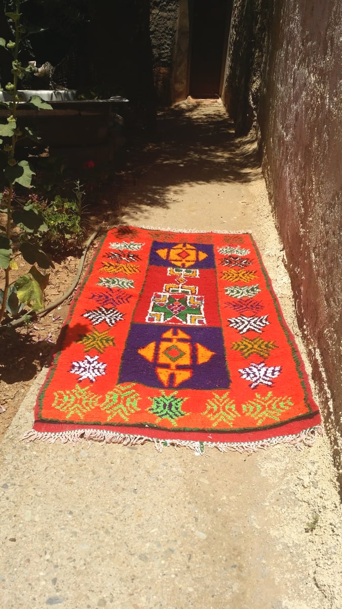 Pile Knot Rug Wool and Thread Colored Morocco