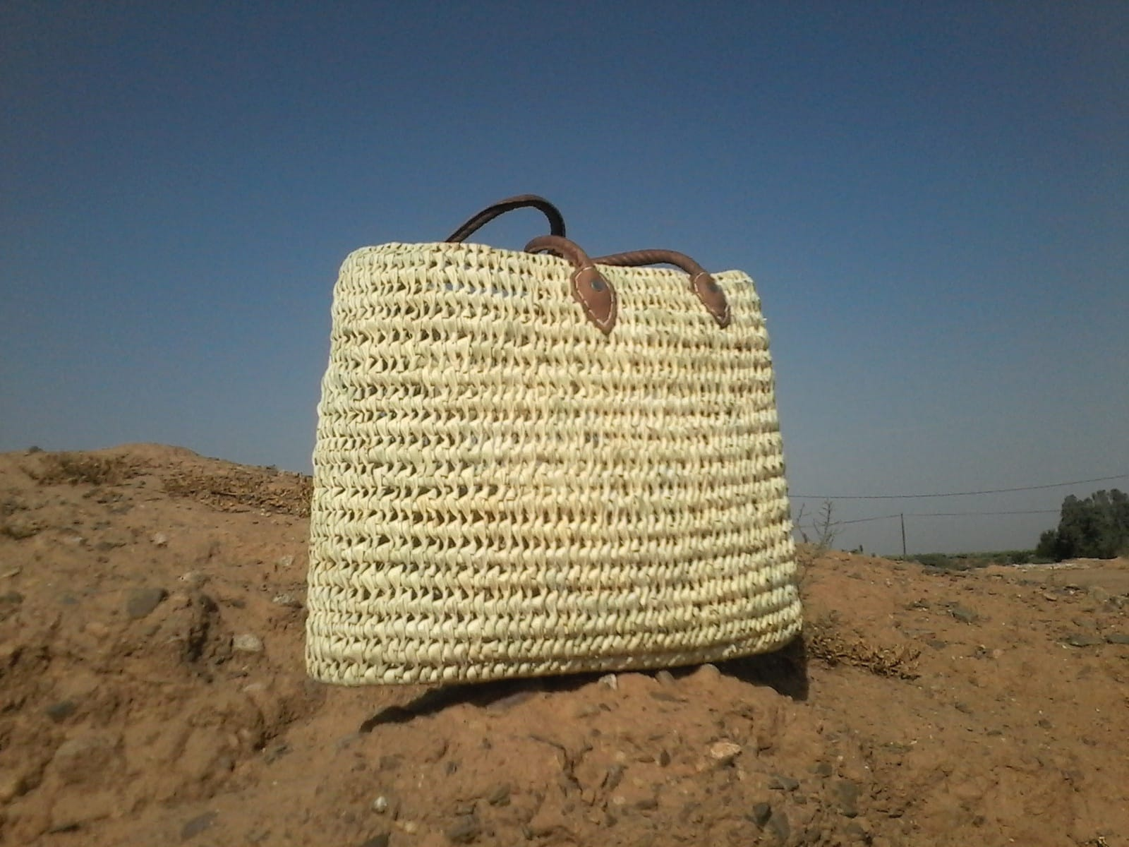 Market Tote Reed and Goat Leather White Morocco
