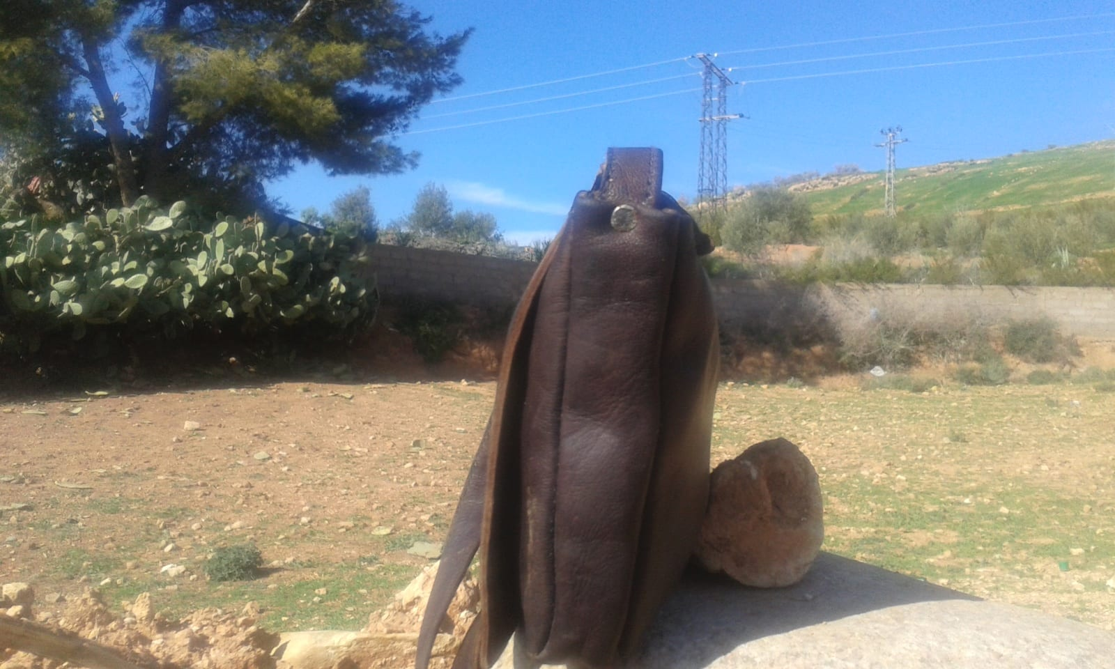 Bags Fabiric and Leather Brown, Grey Morocco