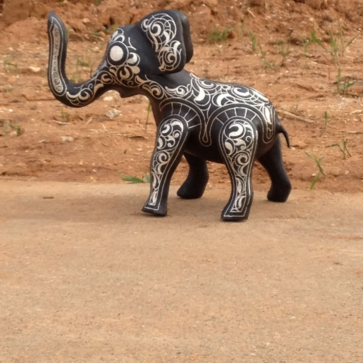 Animal  Steel and Silver Black, White Morocco