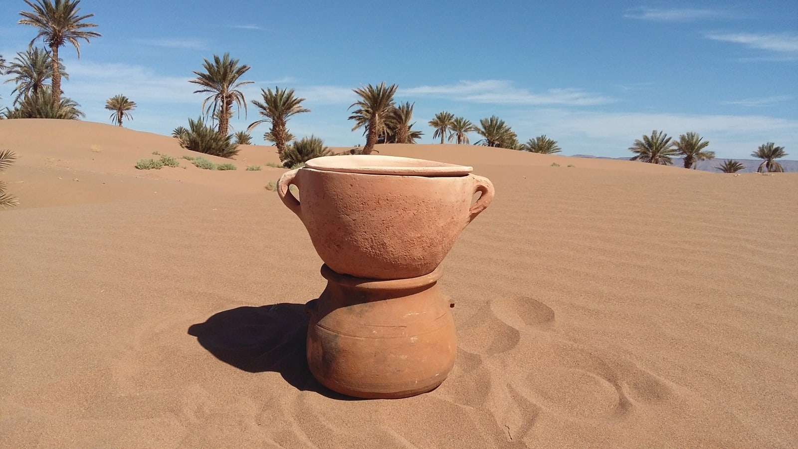 Water Pot Soil and Wood and Shrubs Brown Morocco