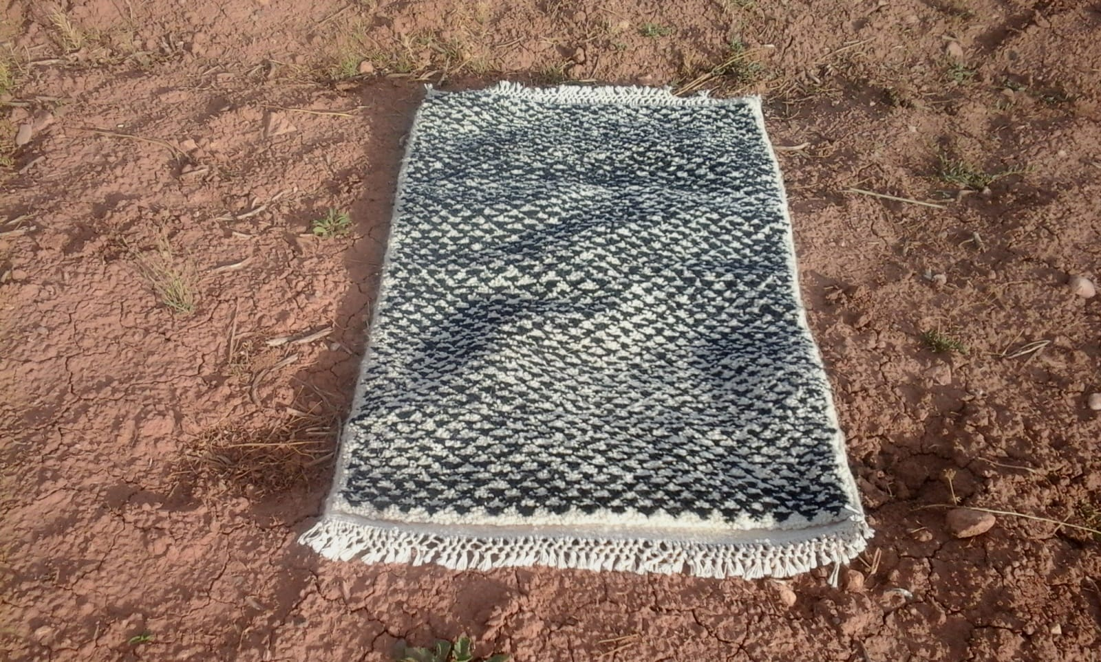 Pile Knot Rug  Cotton Warp Black, White Morocco