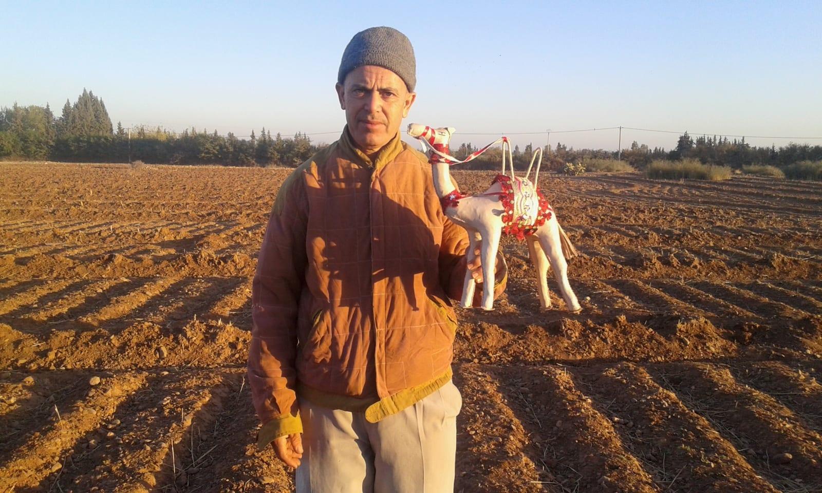 Toy Camel