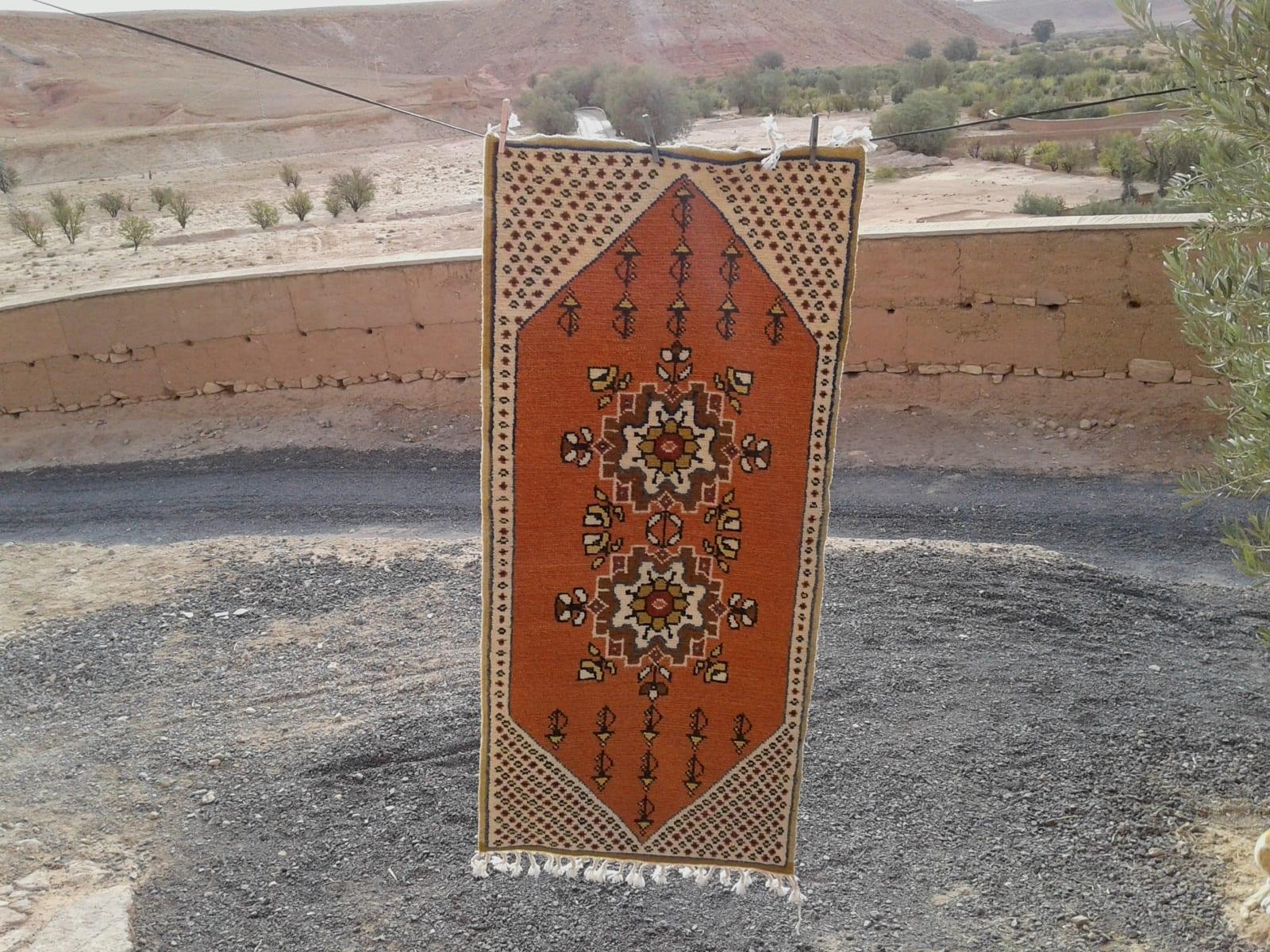 Zerbya  Colored Morocco