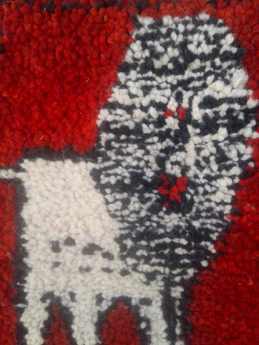Pile Knot Rug Dyed Wool Red, Black Morocco