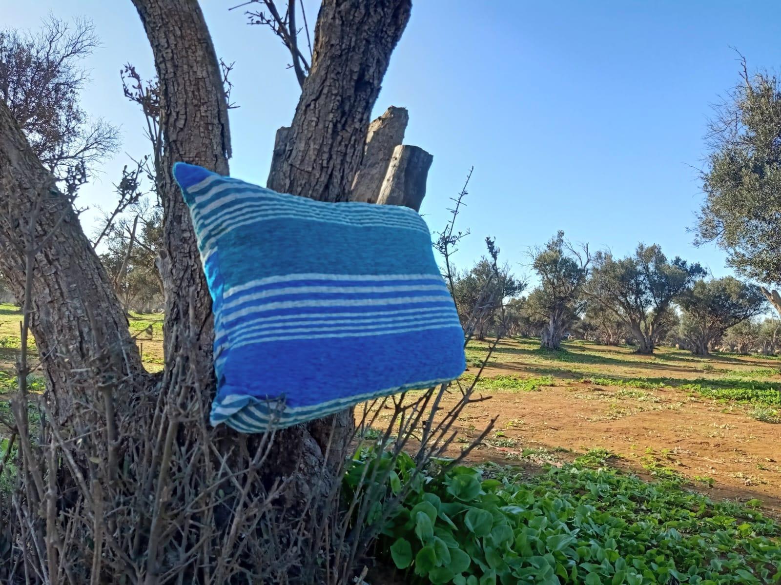 pillow  Light Blue, Blue Morocco