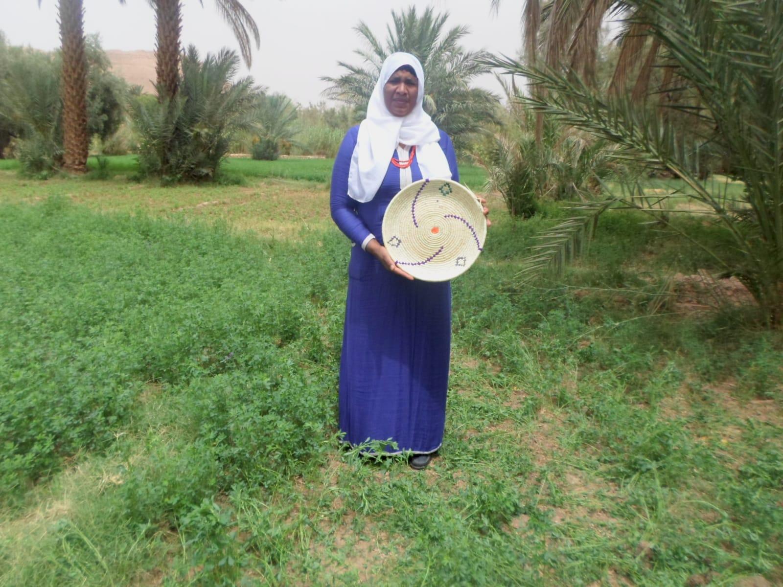 Basket  Purple, Green Morocco