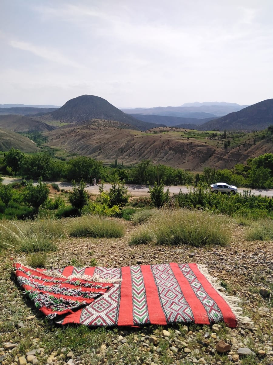 Flatweave Stroma and Ihebba Colored Morocco