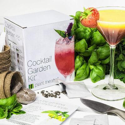 Kit de culture de plantes pour cocktails