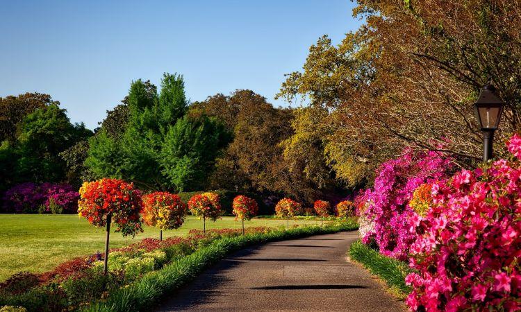 Joli chemin fleuri fait - Inspiration Hortus Box