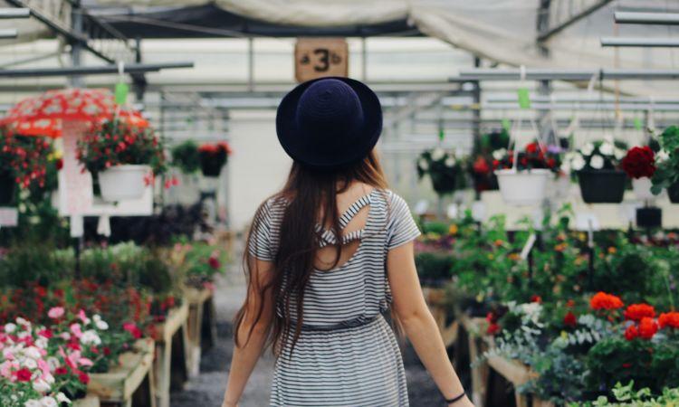 HortusBox achat de plante en jardineries astuce aménagement paysager jardin