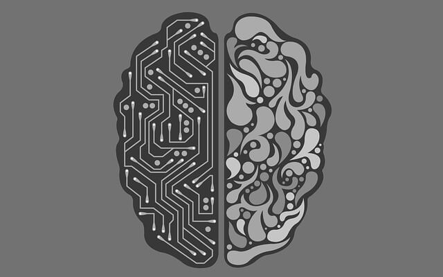 Illustration of tech-board and decorative brain halves.