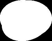 Orbit Case Study