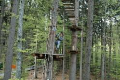 Seilpark Interlaken forest adventure park i