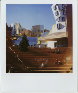 boston polaroid