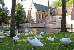 Minnewater park Bruges