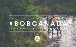 moose, hi canada