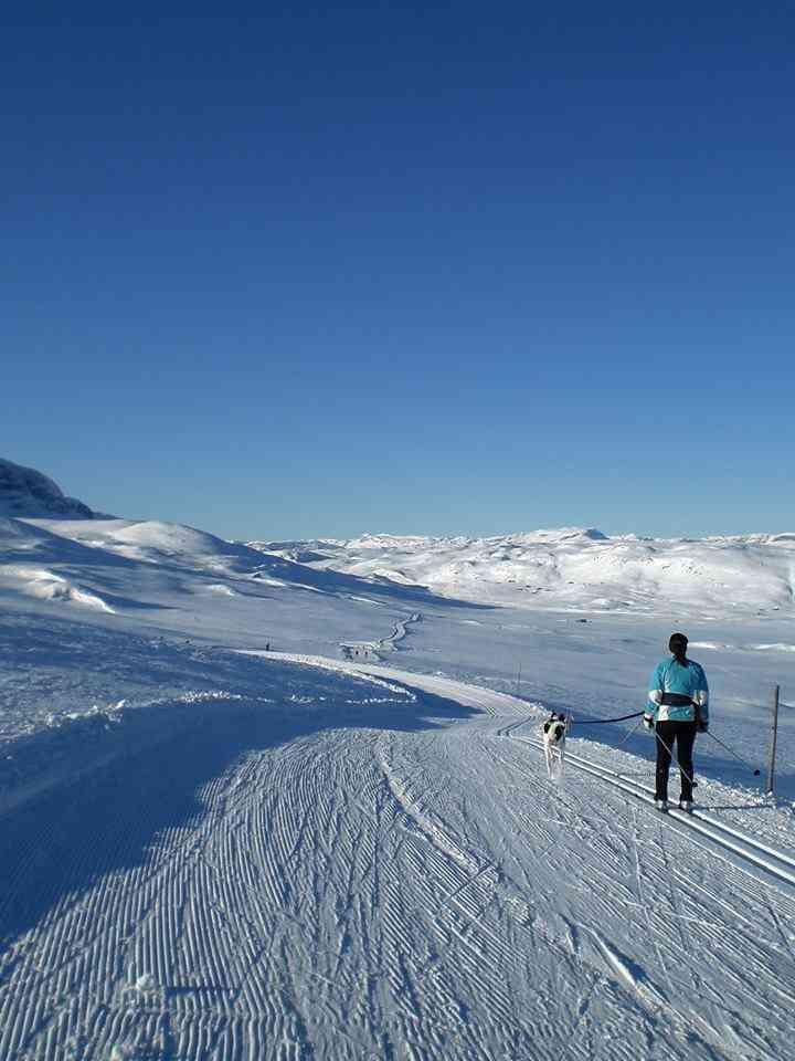 Geilo, HI Norway