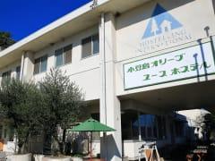 Shodoshima - Olive YH