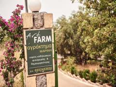 Art Farm Marinis