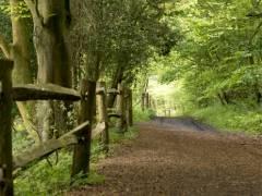 YHA Tanners Hatch Surrey Hills