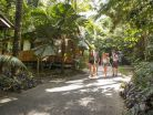 Cape Tribulation Beach House YHA-image