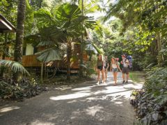 Cape Tribulation Beach House YHA