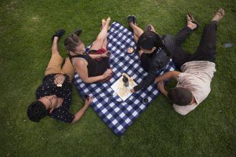 Hunter Valley YHA : Hunter Valley picnic