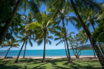Airlie Beach YHA : Airlie Beach