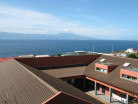 Azores - S.Jorge Island - Calheta-image