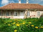 Gästehaus Fogarasch-image