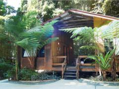 Cape Tribulation Beach House YHA