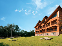 Timber House (Seohae Youth Hostel)
