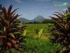 La Fortuna - Jardines Arenal